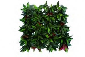 Perete plante artificiale Magnolia leaves 50x50
